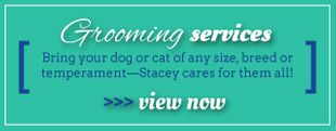 Grooming Services - Bring your dog or cat of any size, breed or temperament - Stacey cares for them all! >>>View Now