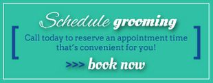 Schedule Grooming - Call today to reserve an appointment time that's convenient for you! >>>Book Now
