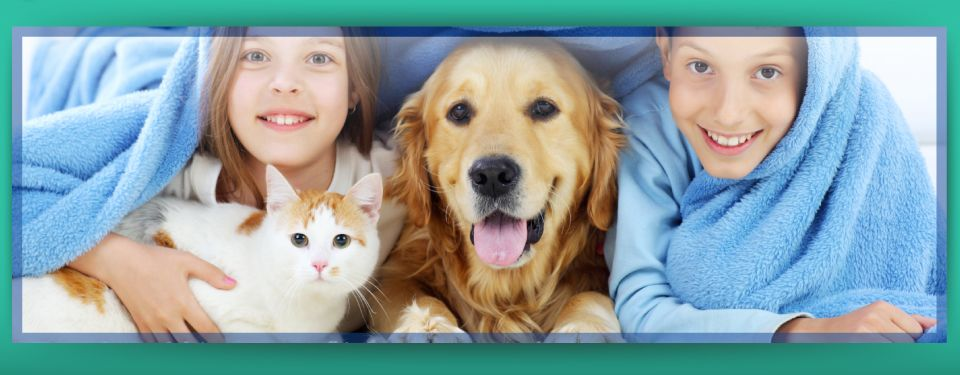 Your Pets are Family Here! - Dog, cat and kids